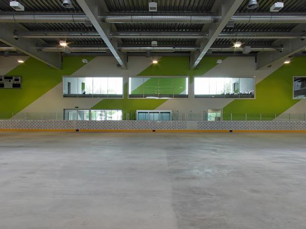Projektleitung Kunst am Bau Eishalle St. Gallen 2006