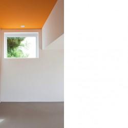 Bild René Rötheli, KT Color 32.08, Orange vif